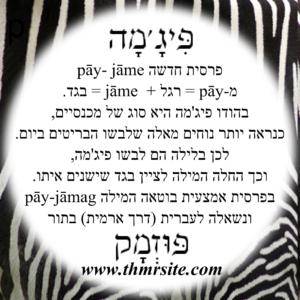 פיג'מה, פוזמק, אטימולוגיה, מילים פרסיות בעברית, מילים מפרסית, תחתיות לכוסות